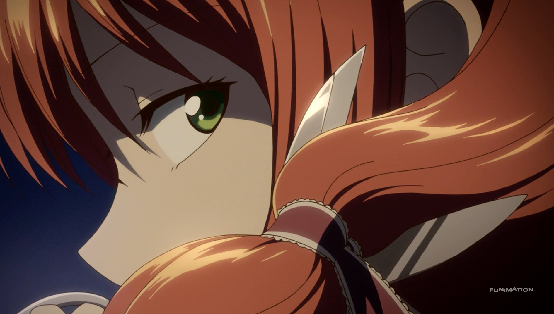 Anime Review: Snow White With the Red Hair | Heart of Manga